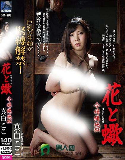 真白湖子(太田新叶)热门番号【BDA-068】资料详情
